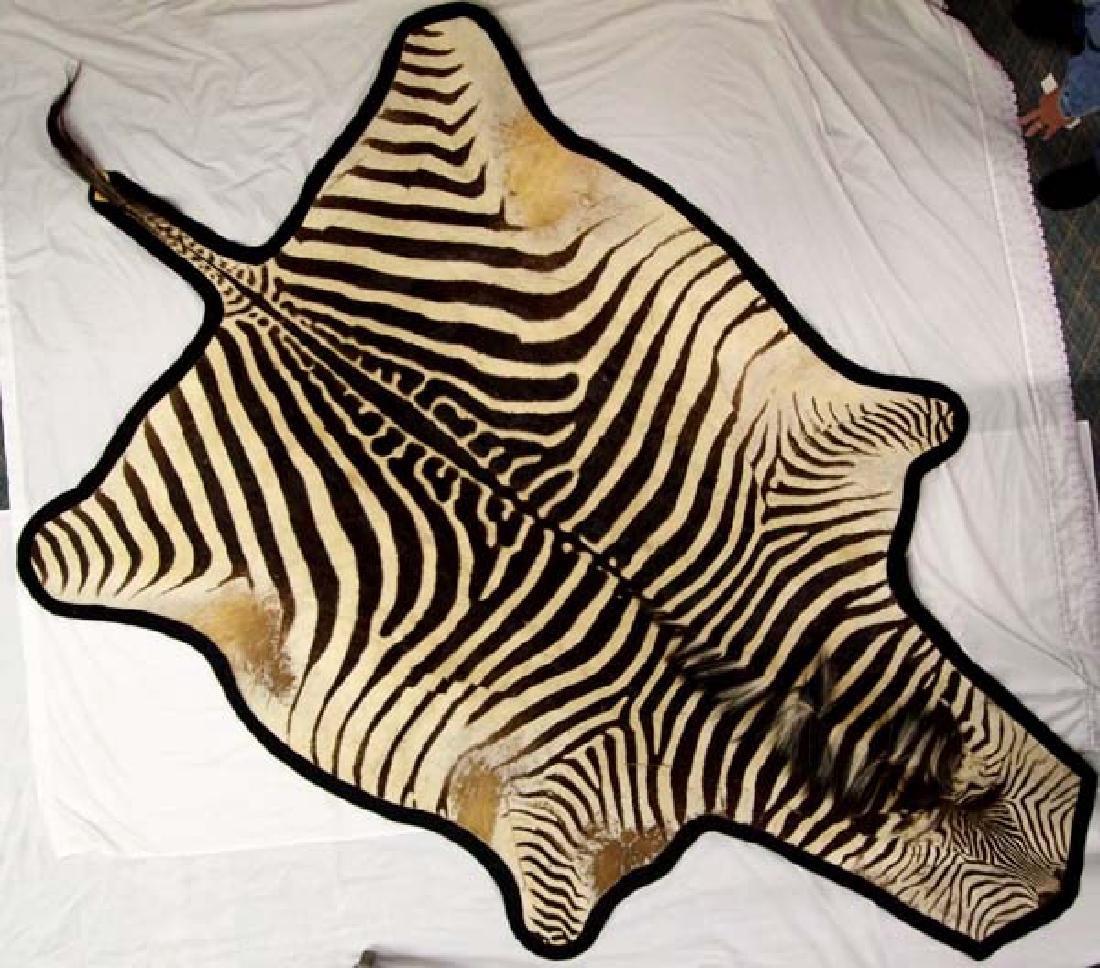 Full Sized Authentic Botswana Africa Zebra Rug