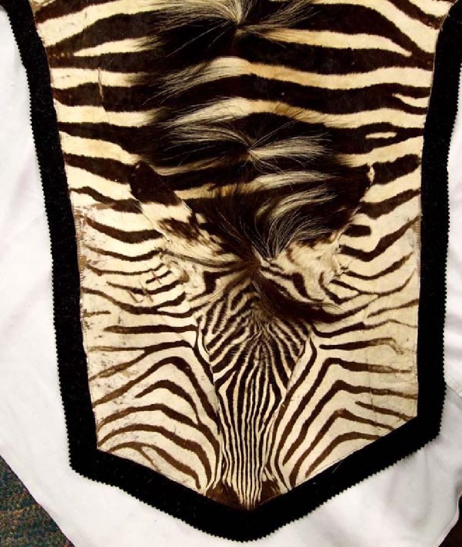 Full Sized Authentic Botswana Africa Zebra Rug - 2