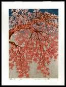 Hajime Namiki - Japanese Woodblock of Cherry Blossoms