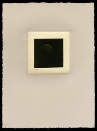Yozo Hamaguchi Color Mezzotint - Amber Walnut