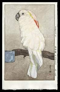 Hiroshi Yoshida Woodblock - Obatan Parrot