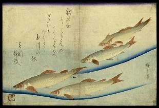 Ando Hiroshige Japanese Woodblock Print - Trout
