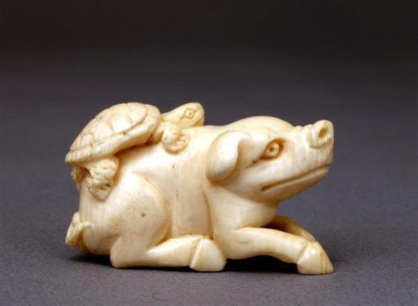 506: Japanese Ivory Netsuke Turtle Tortoise Pig Hog Sg