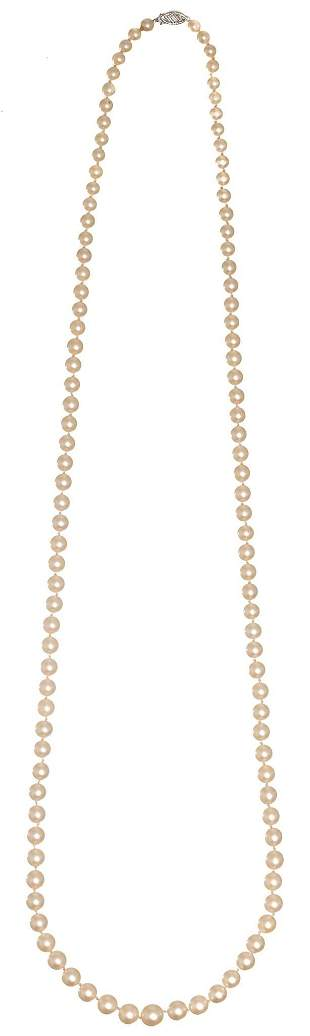 Cultured Ocean Pearl Necklace 14k Gold Clasp