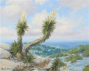 Robert Harrison (b. 1949), Hilltop Yucca