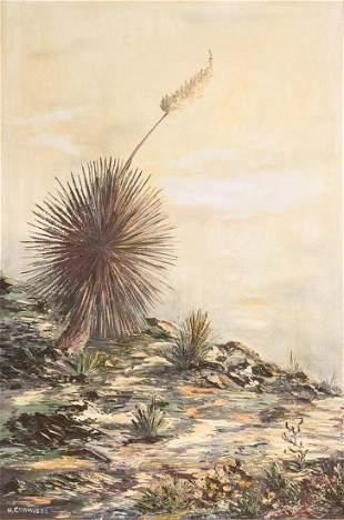 Helen Chambers, Yucca Bloom
