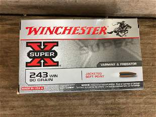 20 ROUNDS WINCHESTER .243
