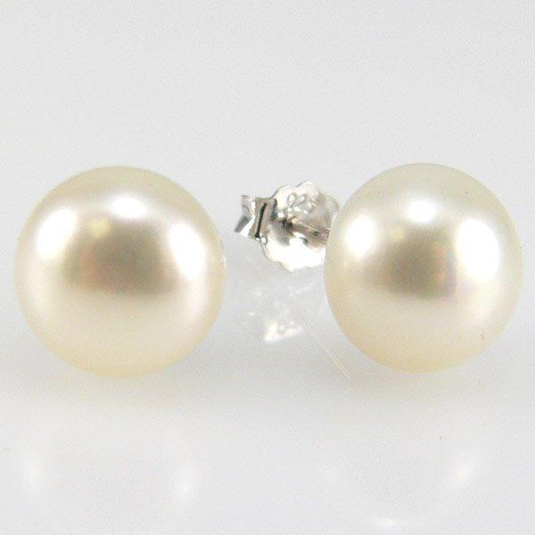 301132000: SS 8-8.5 WHITE PEARL FWP EARRINGS