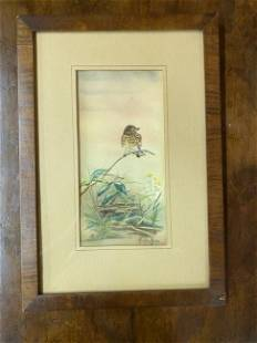 Watercolor of Bird on a Branch, signed