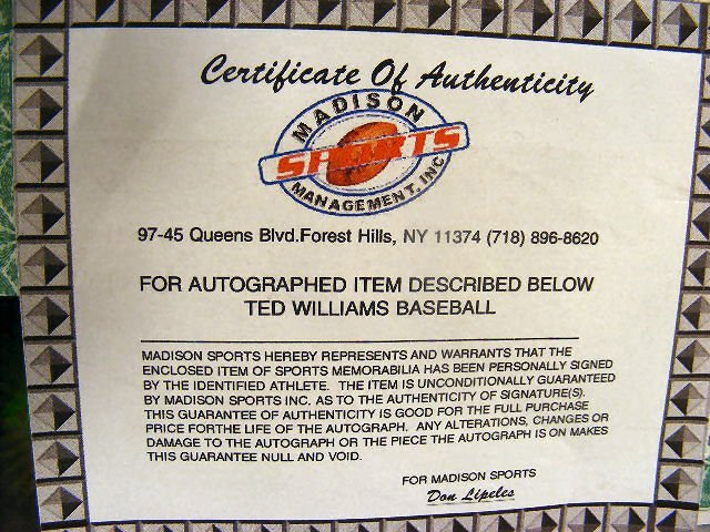 98B: Signed Ted Williams baseball, in protective cover  - 5