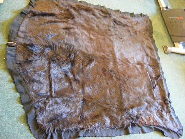 "166B: Early 1900's bear skin sleigh/ auto blanket, 57"""