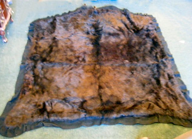 "166B: Early 1900's bear skin sleigh/ auto blanket, 57""  - 2"