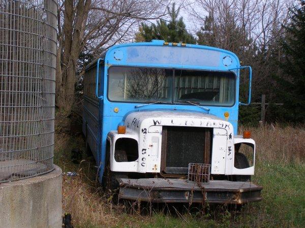 17W: 1975 International Bus