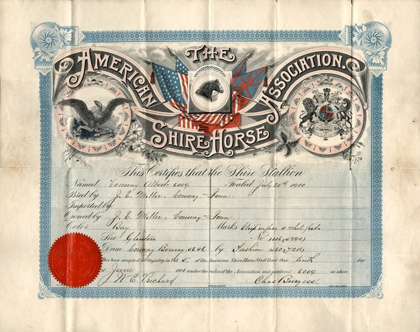 5098: Amer Shire Horse Association 1900 Stock
