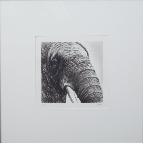 16: Elephant