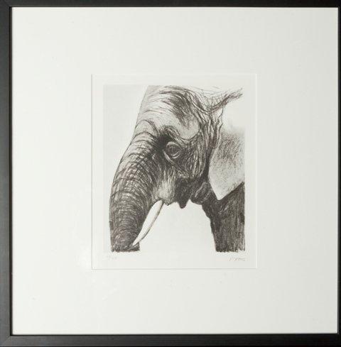 16: Elephant - 2