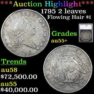 ***Auction Highlight*** 1795 2 leaves Flowing Hair