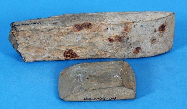 262: Two Hawaiian Basalt Adze Blades Found on Island of