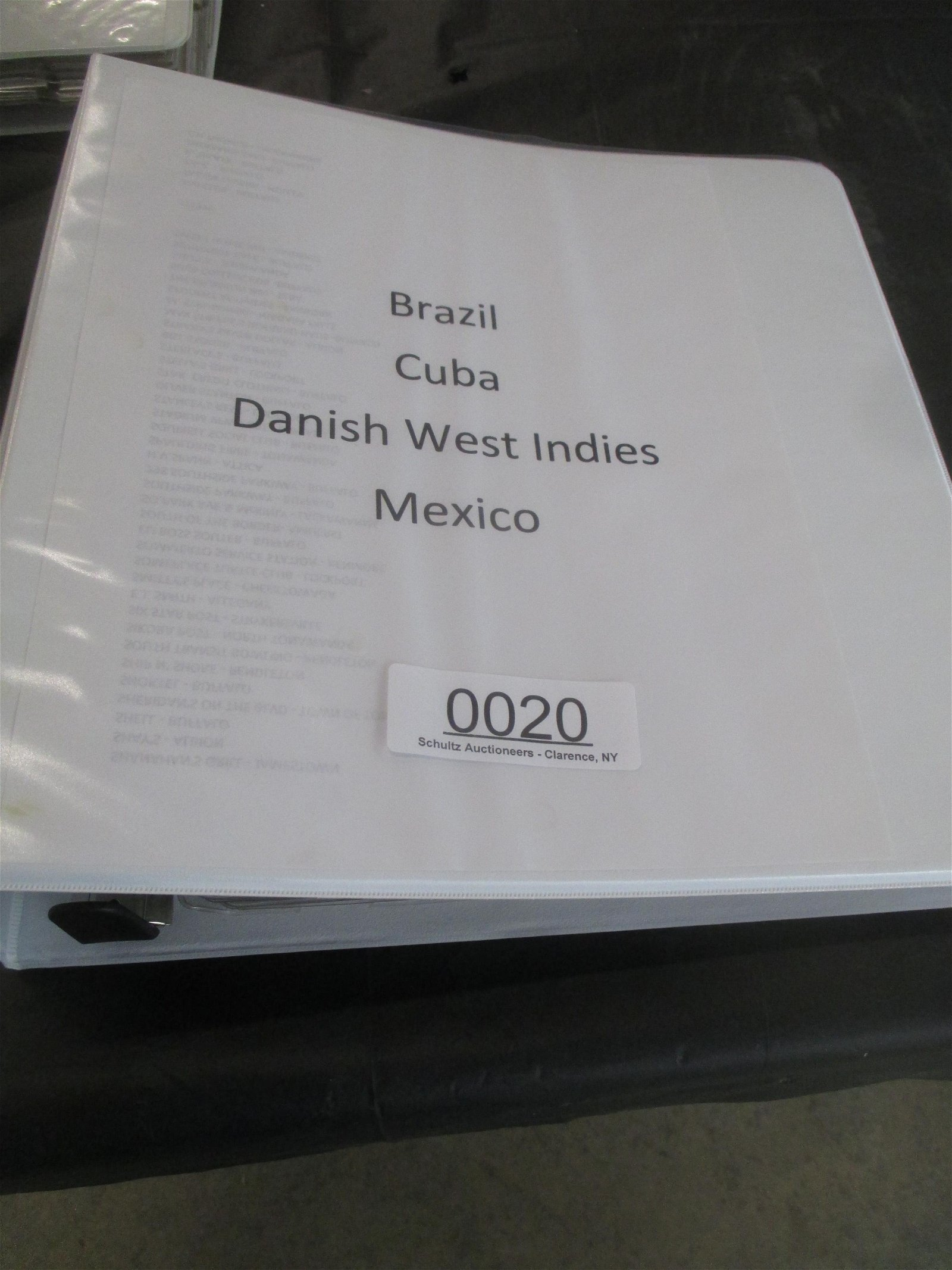 BINDER WITH APPROX 140 COINS FROM BRAZIL, CUBA, DANISH