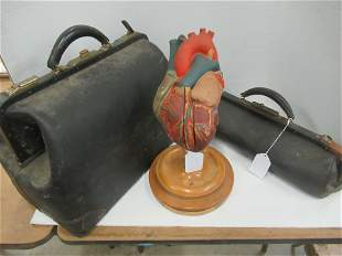 Doctors Bags & Heart Model
