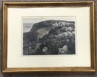 Hand Colored Engraving C Cousen Holmes Hunt Pinxt Sheep