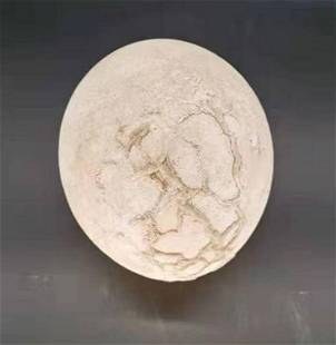 A LARGE OSTRICH EGG FOSSIL