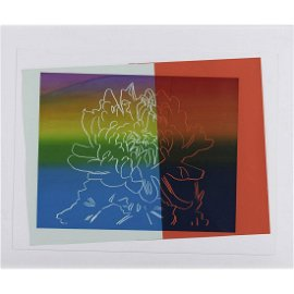 Æ' Andy Warhol (Andrew Warhola) (1928-1987) Kiku - 1983