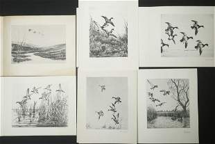 (15) ETCHINGS OF DUCKS BY VARIOUS ARTISTS, USED AS