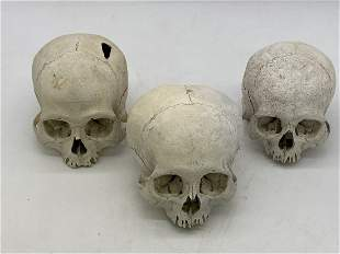 Lot Of 3 Pre-Columbian Skulls Via The McIntyre Estate