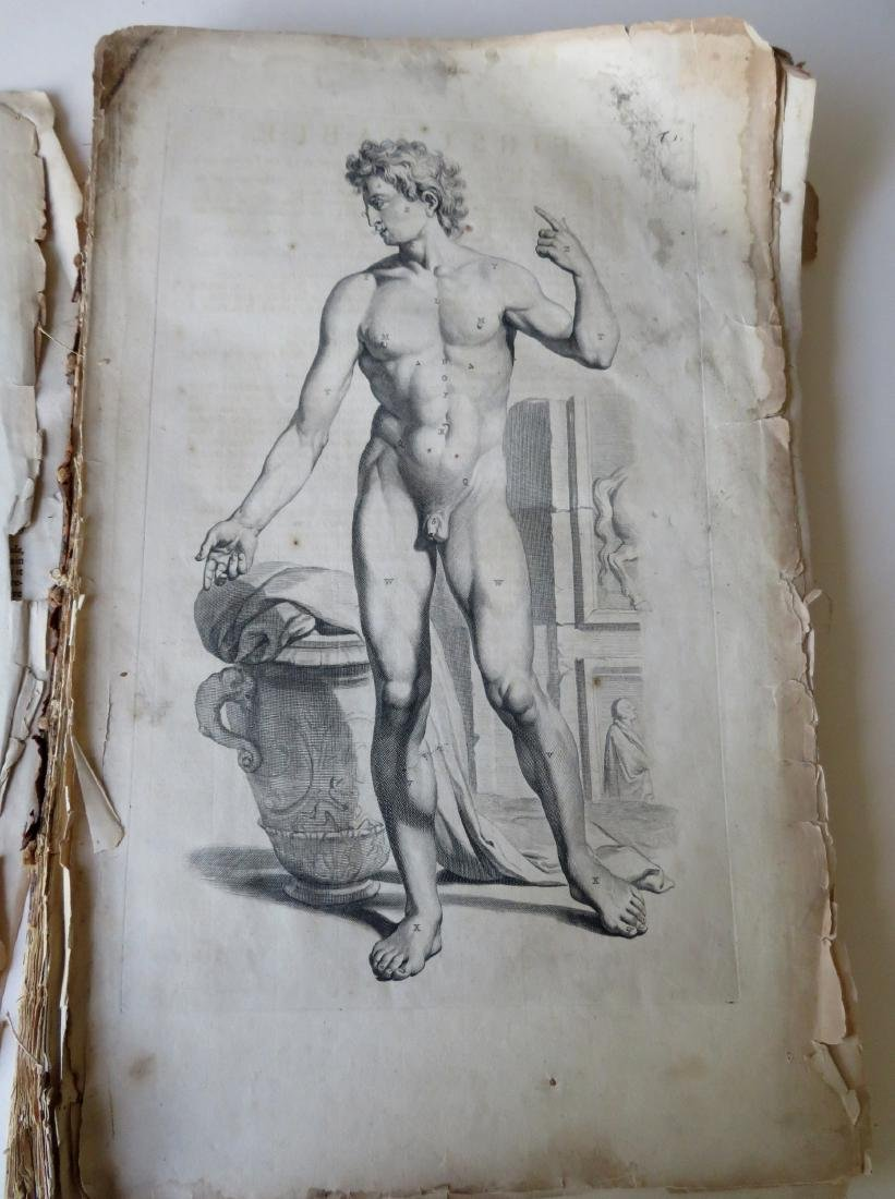 """Book by William Cowper (1666-1709 entitled """"THE ANATOMY - 4"""