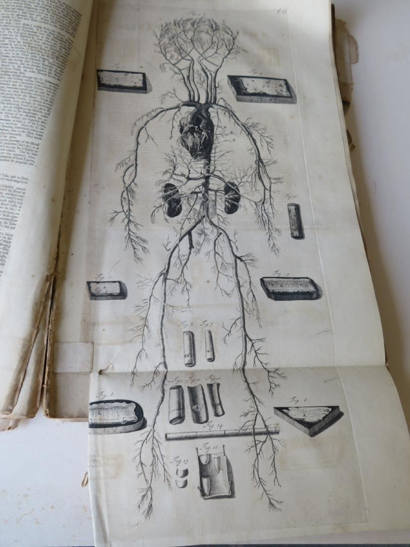"""Book by William Cowper (1666-1709 entitled """"THE ANATOMY - 7"""