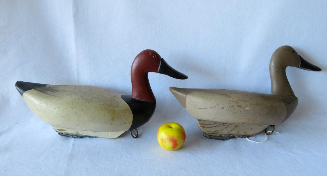 Pair of oversized Canvasback decoys with engraved