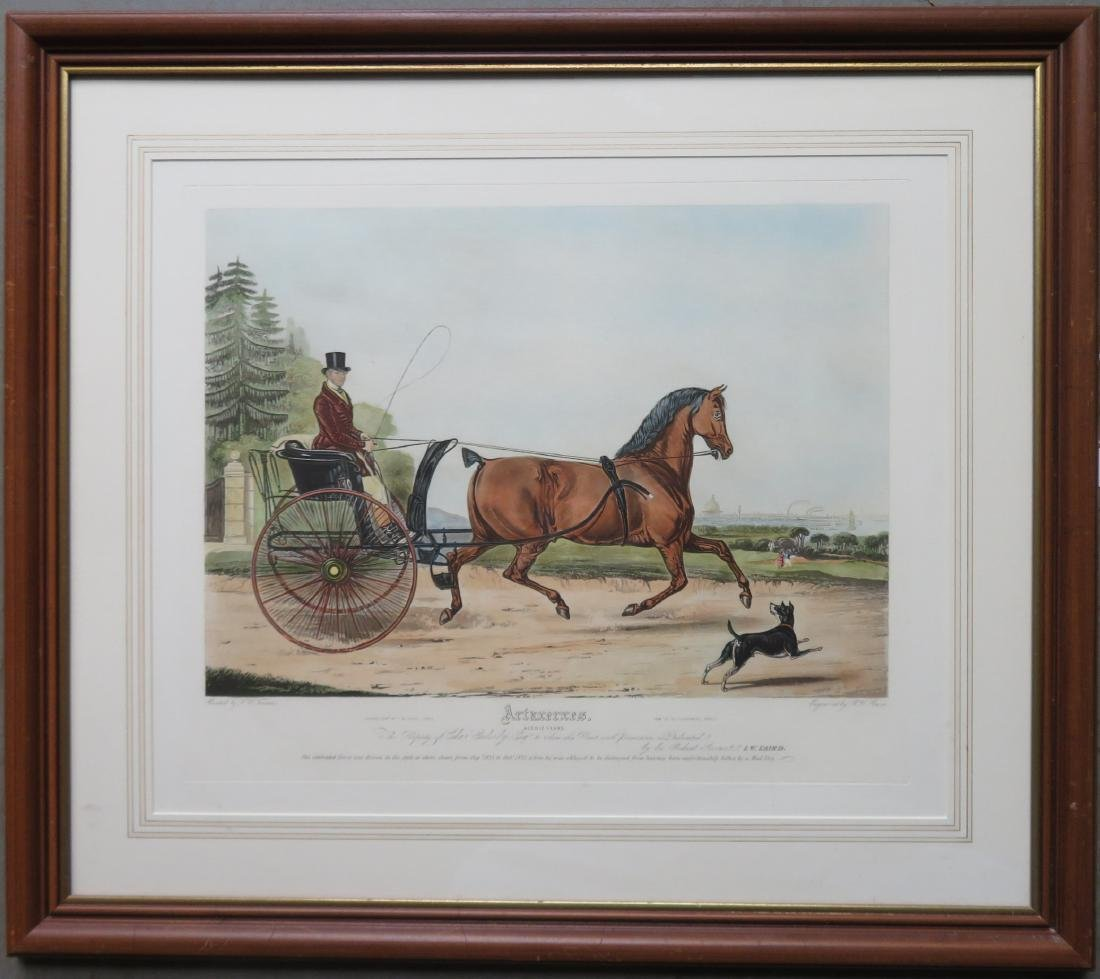 Lithograph of a Horse and carriage, large folio,  hand