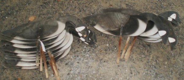 1004: Sixteen Silhouette Goose Decoys