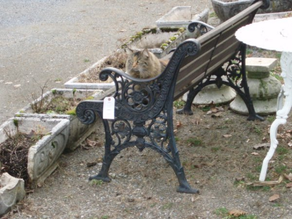 15: Park bench - iron sides and wooden slats - 2