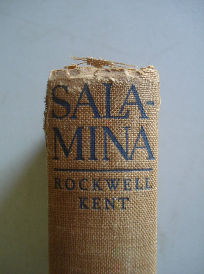 "14: Book entitled ""Salamina"" by Rockwell Kent published"
