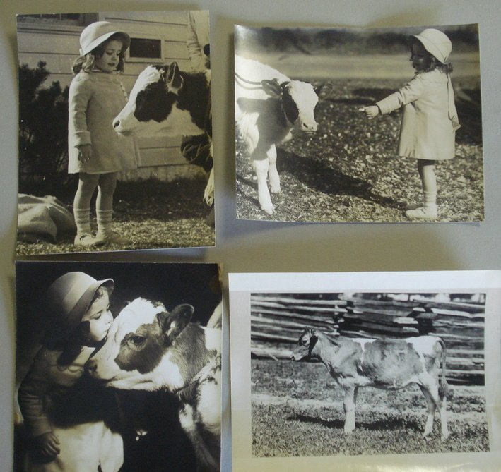 124: Grouping of 12 misc. photos of children with farm
