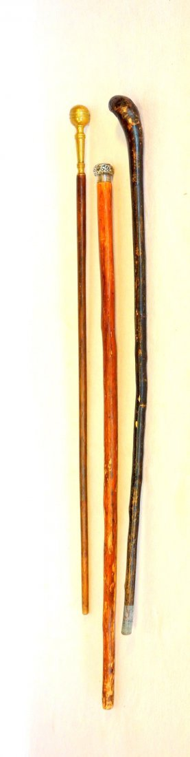 Three walking sticks including one with Sterling handle