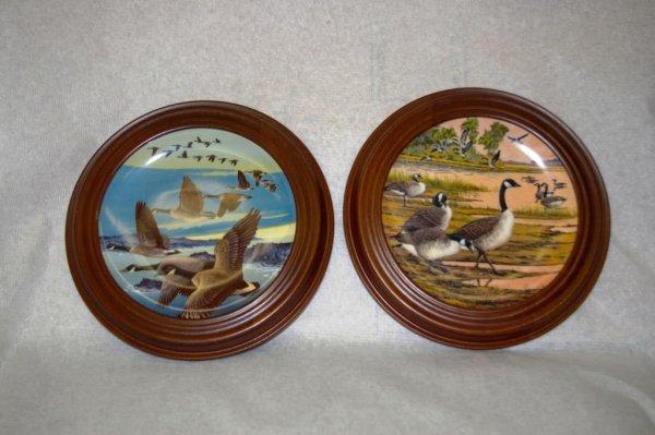 6: Five Framed Donald Pentz Collector Plates