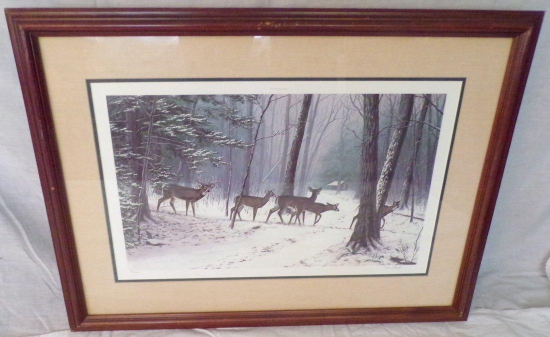 Framed Wildlife Landscape Print