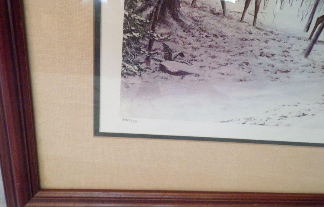 Framed Wildlife Landscape Print - 3