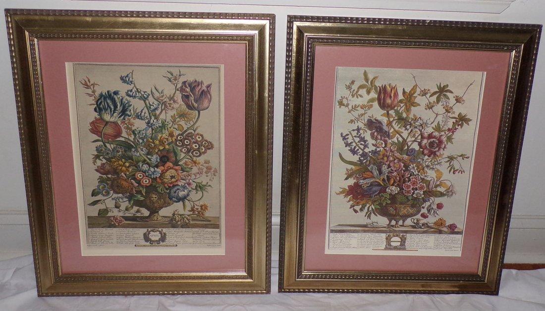 Pair of Reproduction Botanical Prints