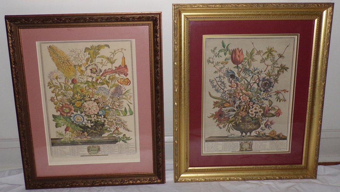 2 Reproduction Botanical Prints