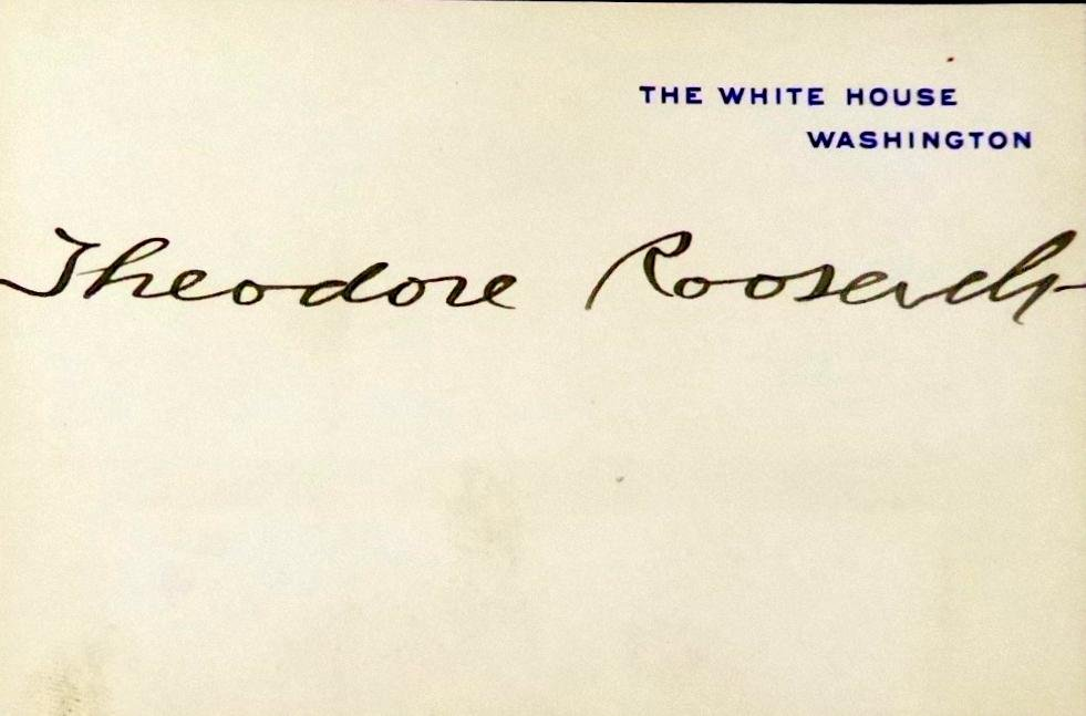 26th President THEODORE ROOSEVELT - WH Card