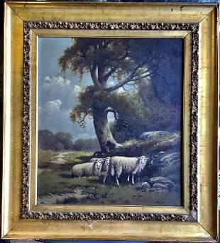 Charles Grant Davidson oil on canvas sheep
