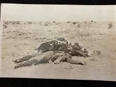 Mexican Revolution Original Photograph 1910 RPPC