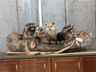 Noah's Ark 5 Critters In A Birch Bark Canoe Taxidermy