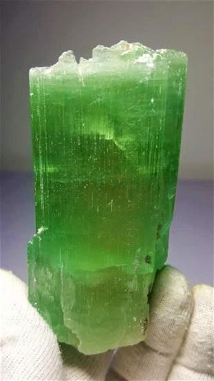 286 Gram Terminated Lush Green Kunzite
