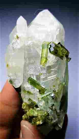 95.9 Gram Tourmaline Crystals and Quartz