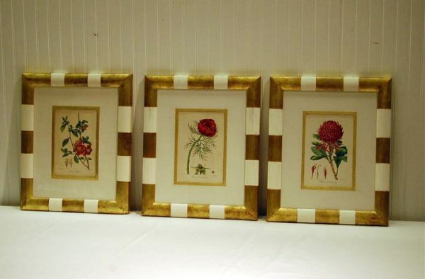 338: THREE LATE FRAMED & MATTED 18TH CENTURY HAND COLOR